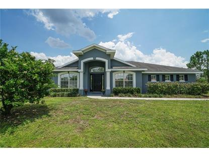 2265 BRONCO DR, Saint Cloud, FL