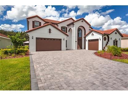 2820 SWOOP CIR Kissimmee, FL MLS# S5006962