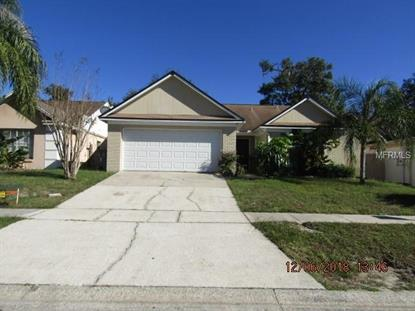 337 MANTIS LOOP, Apopka, FL