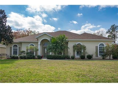 1963 SIR LANCELOT CIR Saint Cloud, FL MLS# S5012131