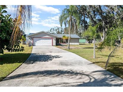 1780 PALM TREE DR Kissimmee, FL MLS# S5012438