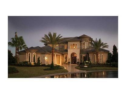 thonotosassa fl homes for sale
