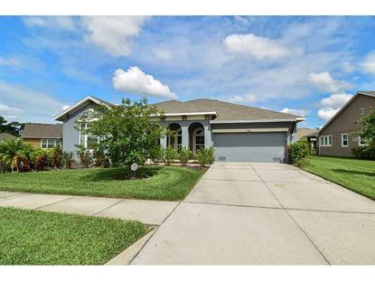 6706 PARK STRAND DR Apollo Beach, FL MLS# T2814250