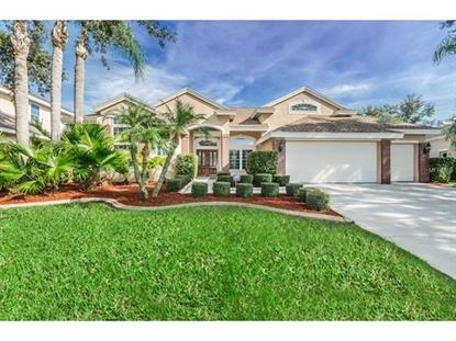 4665 AYLESFORD DR, Palm Harbor, FL