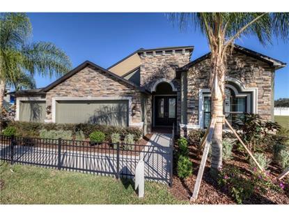 dover fl real estate homes for sale in dover florida