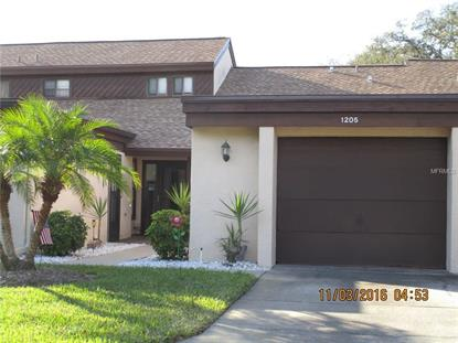 1205 PALM DR, Tarpon Springs, FL