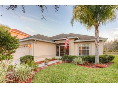 18220 HOLLAND HOUSE LOOP, Land O Lakes, FL