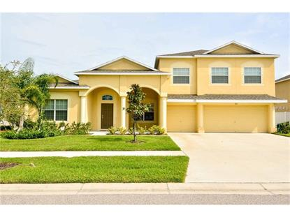 210 ORANGE MILL AVE, Ruskin, FL