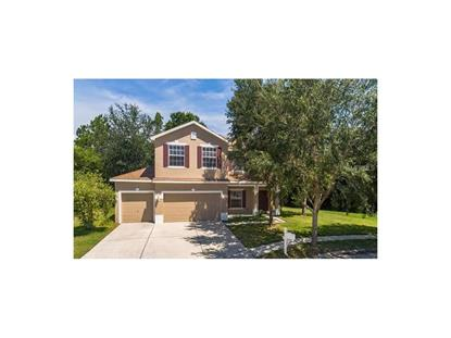 12505 BAY BRANCH CT, Tampa, FL