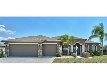 319 HOPE BAY LOOP Apollo Beach, FL MLS# T2875942