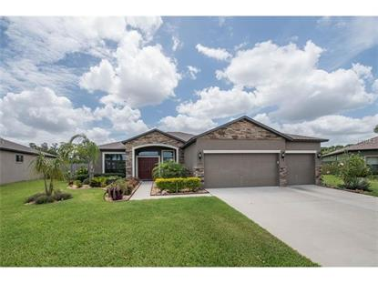 326 STAR SHELL DR Apollo Beach, FL MLS# T2878559