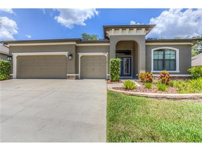 15664 STARLING WATER DR, Lithia, FL
