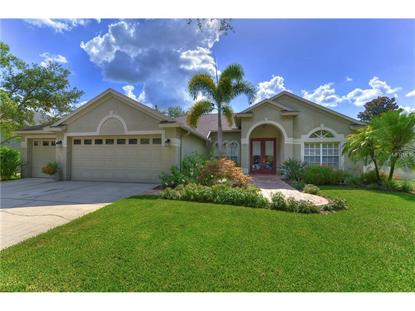 Fish hawk ranch fl real estate homes for sale in fish for Fish real estate