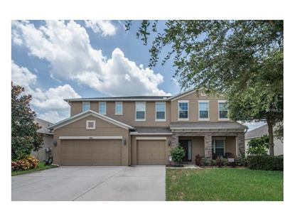1405 rushgrove cir dover fl 33527 sold or