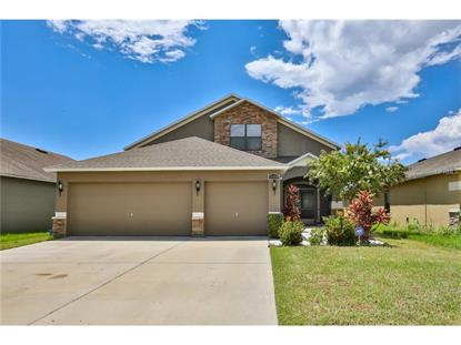 11539 TANGLE CREEK BLVD Gibsonton, FL MLS# T2898495