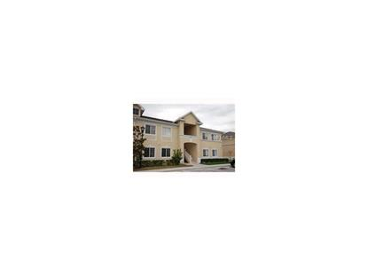 9509 NEWDALE WAY #201, Riverview, FL