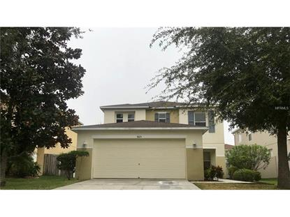 9125 MIRAH WIND PL, Land O Lakes, FL