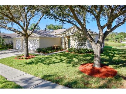 10116 TANTARA CT Riverview, FL MLS# T2918188
