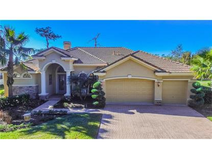 7105 TIMBER RIDGE WAY, Land O Lakes, FL