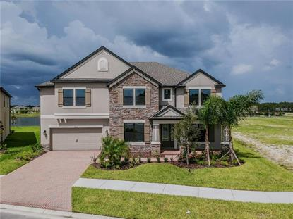 10706 FOXTAIL PASTURE WAY, Tampa, FL