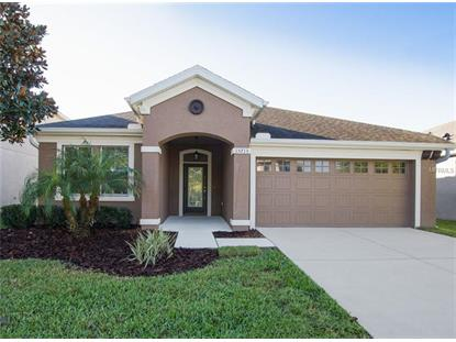 15713 OAKLEAF RUN DR, Lithia, FL