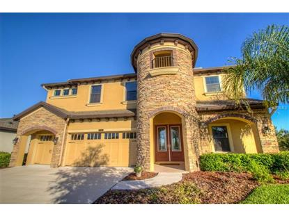 8155 SWISS CHARD CIR, Land O Lakes, FL