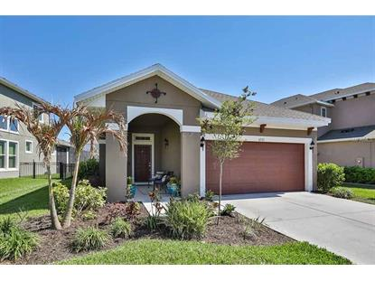 6531 SALT CREEK AVE, Apollo Beach, FL