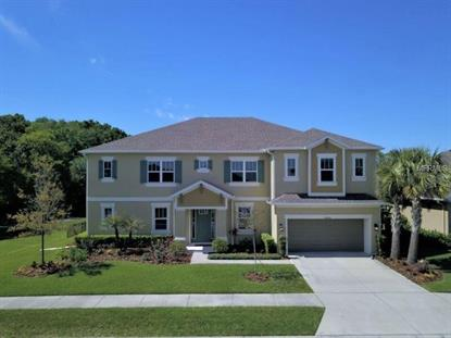 26858 EVERGREEN CHASE DR, Wesley Chapel, FL