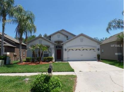 4438 HAVELOCKE DR, Land O Lakes, FL