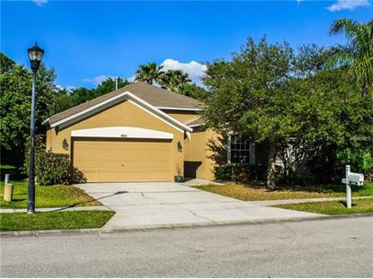 4826 WINDINGBROOK TRL, Wesley Chapel, FL