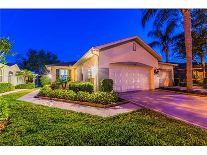 2138 ACADIA GREENS DR, Sun City Center, FL