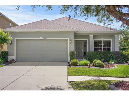 20605 WHITEWOOD WAY Tampa, FL MLS# T3100622