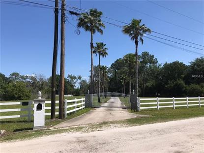 23415 ROLLING MEADOW LN, Land O Lakes, FL