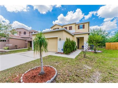 10924 GOLDEN SILENCE DR, Riverview, FL