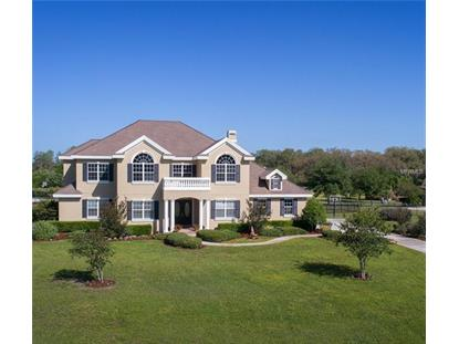 17228 BREEDERS CUP DR, Odessa, FL