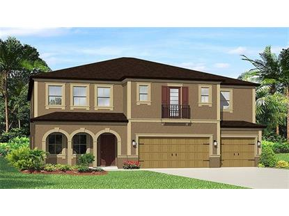 11912 SUNBURST MARBLE DR, Riverview, FL