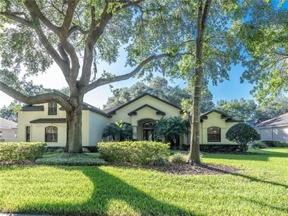6231 KINGBIRD MANOR DR, Lithia, FL