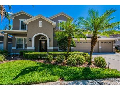 16173 COLCHESTER PALMS DR Tampa, FL MLS# T3101875