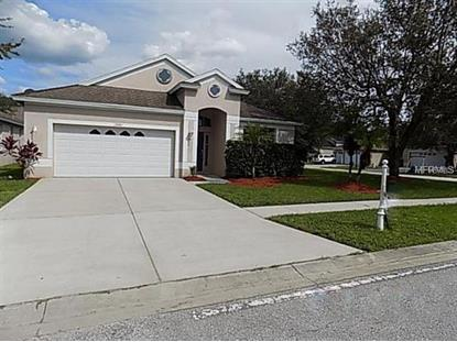 13001 TERRACE BROOK PL Temple Terrace, FL MLS# T3103484