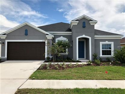11739 SUNBURST MARBLE DR Riverview, FL MLS# T3105447