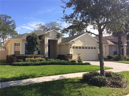 3118 SILVERMILL LOOP, Land O Lakes, FL