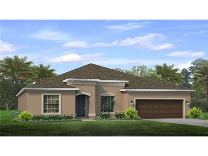11940 SUNBURST MARBLE DR, Riverview, FL