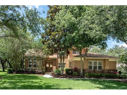6035 AUDUBON MANOR BLVD Lithia, FL MLS# T3108828