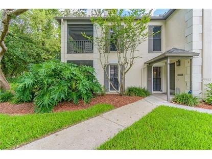 13135 VILLAGE CHASE CIR #1, Tampa, FL