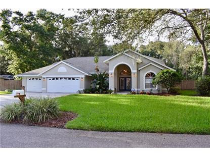 2410 HEATHER MANOR LN, Lutz, FL