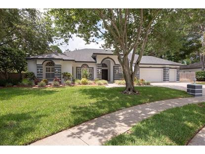 3069 HOMESTEAD CT, Clearwater, FL