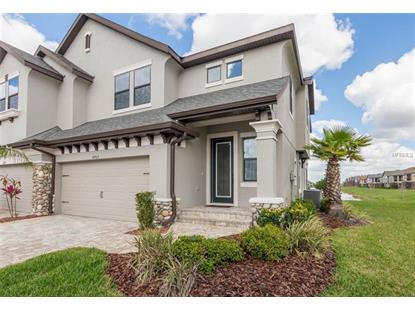 4703 WANDERING WAY, Wesley Chapel, FL