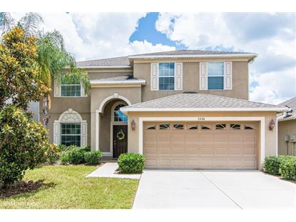 3536 MARMALADE CT Land O Lakes, FL MLS# T3114022