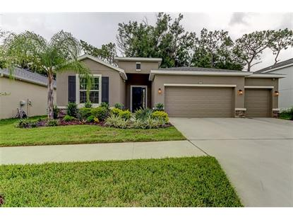 10434 RIVERDALE RISE DR Riverview, FL MLS# T3116576