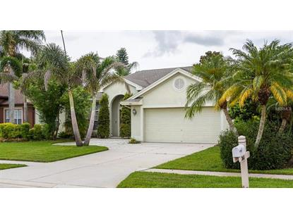 380 BRIDLE PATH WAY, Tarpon Springs, FL